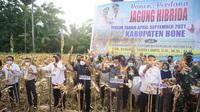 Menteri Pertanian Syahrul Yasin Limpo (Mentan SYL) melakukan panen perdana jagung hibrida musim tanam April di Desa Lanca.