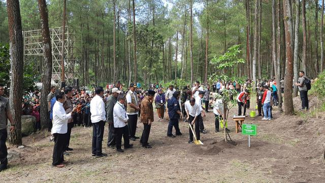 Presiden Joko Widodo atau Jokowi menanam pohon di Gunung Merapi, Jumat (14/2/2020).
