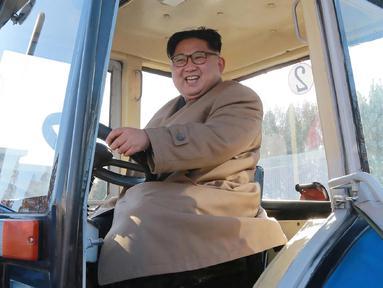 Kim Jong-un saat mengendarai traktor di Kumsong Tractor Factory dalam foto tak bertanggal yang dirilis kantor berita KCNA, (15/11). Traktor buatan dalam negeri ini wujud kemandirian Korut di tengah sanksi internasional. (AFP Photo/Kcna Via Kns/Str)