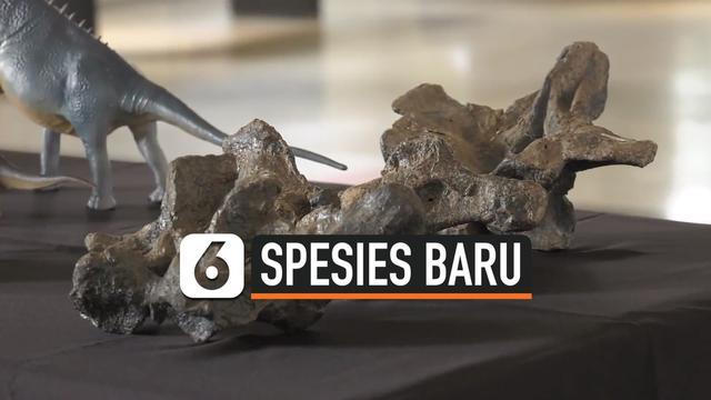 spesies baru