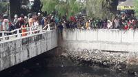Kawanan buaya menghebohkan warga di Kali Grogol. (Twitter TMC Polda Metro Jaya)