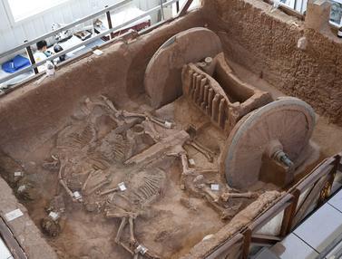 Kereta Perunggu Kuno Selesai Direstorasi di Shaanxi