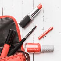 Ilustrasi lipstik coral/copyright shutterstock