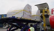 Sebanyak 871.650 dosis vaksin Pfizer donasi dari Pemerintah Amerika tiba di Bandara Soekarno-Hatta, yang merupakan kedatangan vaksin COVID-19 tahap ke 75 pada Kamis, 23 September 2021. (Dok  RYIADHY/INFOPUBLIK/Kementerian Komunikasi dan Informatika RI)