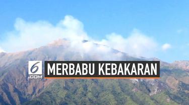 Terbakarnya sebagian lahan di Gunung Merbabu membuat petugas mengevakuasi pendaki yang ada di atas gunung. Angin kencang dan teriknya matahari diduga menjadi penyebab kebakaran.