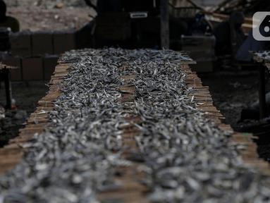 Ikan asin saat dijemur di kawasan Kampung Nelayan Muara Angke, Penjaringan, Jakarta Utara, Selasa (29/9/2020). Menurut nelayan, penjualan ikan asin saat pandemi COVID-19 tidak terlalu terpengaruh karena ikan merupakan bahan makanan yang diperlukan banyak warga. (Liputan6.com/Johan Tallo)