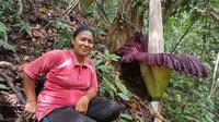 Bunga bangkai tumbuh di Kabupaten Agam, Sumatera Barat. (Liputan6.com/ ist)