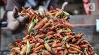 Pedagang merapikan cabai rawit merah yang dijual di Pasar Senen, Jakarta, Kamis (4/3/2021). Data Ikatan Pedagang Pasar Indonesia (Ikappi) mencatat harga cabai rawit merah saat ini di pasaran berkisar Rp120.000 per kilogram. (merdeka.com/Iqbal S. Nugroho)