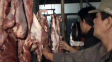 Daging Celeng+Daging Glonggongan