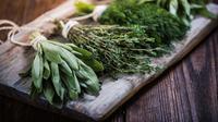Ilustrasi tanaman herbal (iStockphoto)