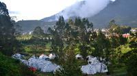 Camping ground di selatan Kompleks Candi Arjuna Dieng, dalam helatan Dieng culture Festival. (Foto: Liputan6.com/Muhamad Ridlo)