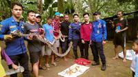 Anggota Pemadam Kebakaran dan Penyelamatan Kota Depok melakukan evakuasi ular sanca di permukiman warga di Gang Pusara RT 1/5, Bojongsari, Kota Depok, Selasa (24/11/2020). (Liputan6.com/Dicky Agung Prihanto)