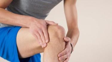 sendi lutut