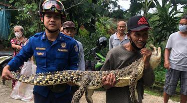 Seekor buaya ditemukan warga Perumahan Cengkeh, Kecamatan Sukmajaya, Depok, Minggu (4/4/2021).