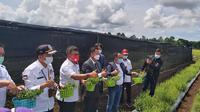 Launching pengembangan stevia pertama di Kabupaten Minahasa, Sulawesi Utara yang