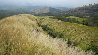 Gunung Arjuno-Welirang Kembali Dibuka, Cek Syarat Pendakian