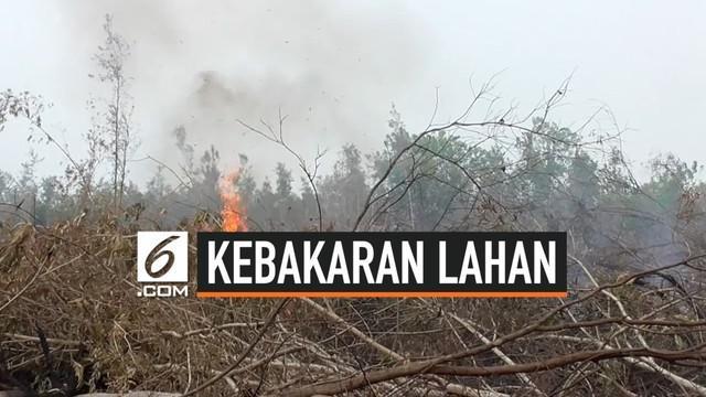 Wakapolri Komjen Pol Ari Dono Sukmanto pastikan akan menindak tegas pembakar lahan dan hutan. Hal ini diungkapkan saat berkunjung ke Palangka Raya, Selasa (13/8).
