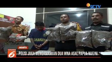 Aparat Polresta Jayapura membekuk seorang pemuda pengangguran yang menjadi bandar narkoba jenis ganja. Omzet transaksi narkoba tersebut nilainya mencapai Rp 2 miliar.