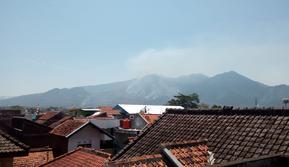 Gunung Guntur terbakar (Liputan6.com/Jayadi Supriadin)
