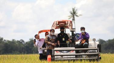 Menteri Pertanian Syahrul Yasin Limpo (Mentan SYL)