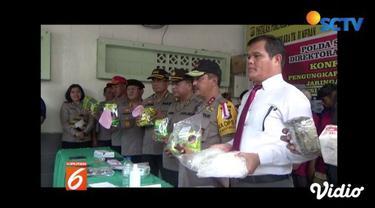 Polda Sumut tembak mati dua WNA anggota jaringan pengedar narkoba dengan barang bukti 14 kilogram.