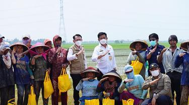 Petani Sumringah Disapa Mentan SYL saat Istirahat di Pinggir Sawah