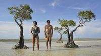 Widi Mulia sedih melihat puluhan pohon bakau besar tak ada lagi di Pantai Walakiri (Dok.Instagram/@widimulia/https://www.instagram.com/p/B6pG1T_BYmd/Komarudin)