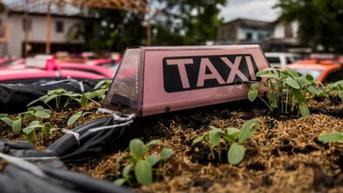 Taksi-Taksi Berubah Jadi Kebun Sayur di Thailand Akibat Pandemi