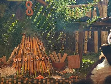 Ulang Tahun ke-8, Panda Cai Tao Dapat Kado Tumpeng Bambu