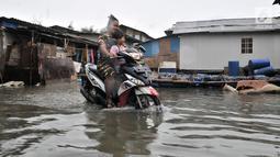 Pengendara motor menerobos banjir rob yang menggenangi permukiman Muara Angke, Jakarta, Selasa (22/1). Banjir air laut pasang atau Rob kembali melanda kawasan itu sejak 6 hari lalu membuat aktivitas warga terganggu. (Merdeka.com/Iqbal S. Nugroho)