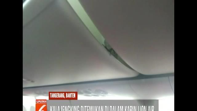 Kepala Otoritas Bandara Wilayah I Soekarno Hatta Herson mengkonfirmasi adanya temuan binatang di dalam kabin pesawat.