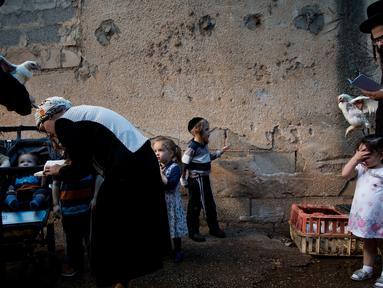 Pria Yahudi ultra-Ortodoks mengayunkan ayam memutari kepala anak-anak dalam ritual Kaparot di Bnei Brak, Israel, Minggu (16/9). Ayam ini kemudian akan disembelih menjadi pengganti seseorang tersebut sebagai penebusan untuk dosa-dosanya. (AP/Oded Balilty)
