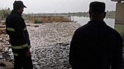 Dua pria melihat ikan mas mengapung di atas permukaan Sungai Eufrat dekat kota Sadat al Hindiya, Jumat (2/11). Para nelayan Irak di selatan Baghdad menemukan ribuan ikan mas yang diternak di pinggiran sungai mati secara misterius. (Haidar HAMDANI/AFP)