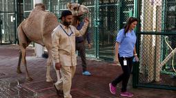 Seorang pawang membawa untanya menunju bangsal operasi di rumah sakit khusus unta di Dubai, Uni Emirat Arab. Rumah sakit hewan ini juga dilengkapi dengan arena balap mini untuk membuat para unta itu berlatih berlari setelah menjalani perawatan. (PATRICK BAZ/DUBAI MEDIA OFFICE/AFP)