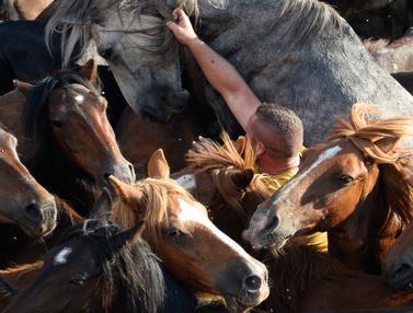Menunggangi Kuda Liar di Spanyol