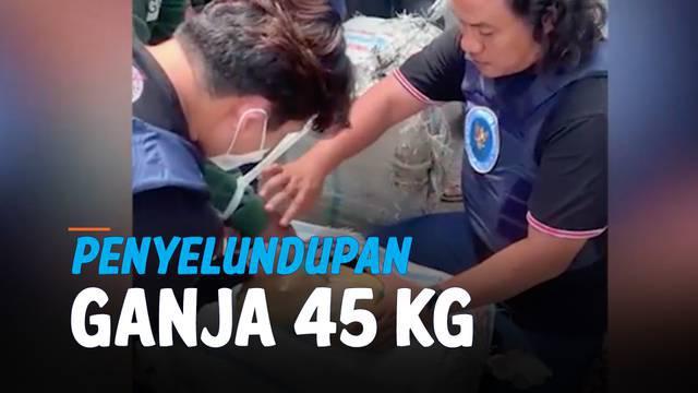 Petguas BNN Jambi berhasil menggagalkan usaha penyelundupan 45 kilogram ganja dari Aceh menuju Purwakarta, Jawa Barat. Ganja dibungkus dalam plastik dan dimasukkan ke dalam sebuah kardus.