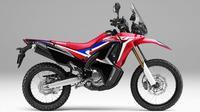Honda CRF250 Rallly Tampil Lebih Gagah (Foto: AHM)