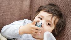 Lakukan Ini Jika Asma si Kecil Kambuh saat Liburan (Ann in the uk/Shutterstock)