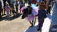 Ketika mendengar kuda kesayangannya akan dikawinkan, Gabe memutuskan menggelar pesta pernikahan.