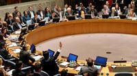 Sidang Dewan Keamanan PBB (Ist)