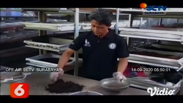 Rudy Dwi Winarko warga Sidoarjo menjadikan cacing sebagai sandaran hidup bagi keluarganya. Sejak 2013 Rudi  membudidayakan cacing di rumahnya. Dalam sebulan keuntungan yang didapat Rp 5 sampai Rp 6 juta.