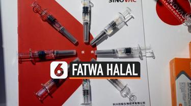 Majelis Ulama Indonesia memutuskan vaksin Covid-19 Sinovac halal. Pengumuman dilakukan usai menggelar rapat pleno pada Jumat siang.
