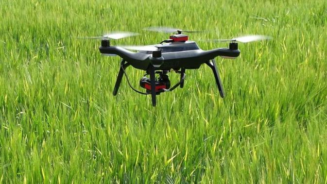 foto ilustrasi penggunaan drone untuk pertanian gandum barley di Inggris - AP#source%3Dgooglier%2Ecom#https%3A%2F%2Fgooglier%2Ecom%2Fpage%2F2019_04_14%2F351725