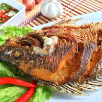 ilustrasi Resep Ikan Nila Goreng/copyright By pimpimon artkonghan (Shutterstock)