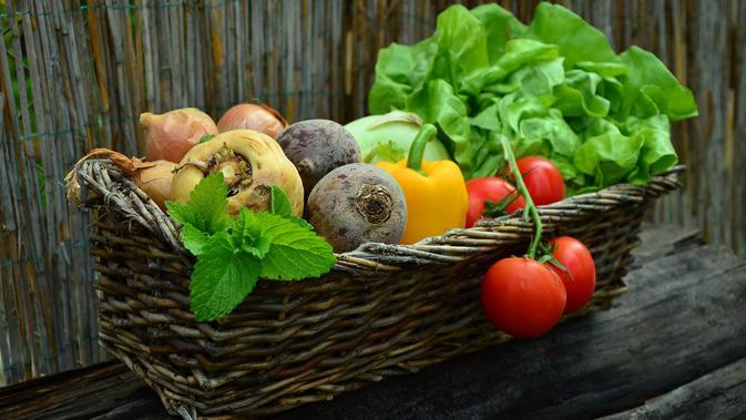 5 Trik Menyimpan Buah Dan Sayur Agar Tetap Segar Tanpa Kulkas Lifestyle Liputan6 Com