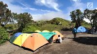 Pendaki membangun tenda saat mendaki Gunung Merbabu di Selo, Boyolali, Jawa Tengah, Minggu (3/2). Gunung dengan tinggi 3145 mdpl ini dapat ditempuh dengan waktu 7 - 8 jam berjalan kaki. (Merdeka.com/Arie Basuki)