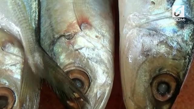 Menyusul gelombang tinggi yang terus terjadi di perairan selatan Daerah Istimewa Yogyakarta pasokan ikan laut ke pasaran di Sleman, terlihat menurun drastis.