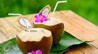 Berikut manfaat mengonsumsi air kelapa di bulan Ramadan dari WRP Coco Splash.