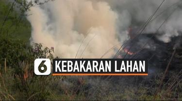 Kebakaran lahan di Banyuasin, Sumatera Selatan terus terjadi. Diperkirakan puluhan hektar lahan terbakar akibat kencangnya angin membawa api.