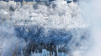 Es dan salju mewarnai pepohonan di sebelah American Falls yang terlihat dari Air Terjun Niagara di Ontario, Kanada, Kamis (31/1). Cuaca dingin yang melanda AS membuat sebagian Air Terjun Niagara membeku. (Tara Walton/The Canadian Press via AP)